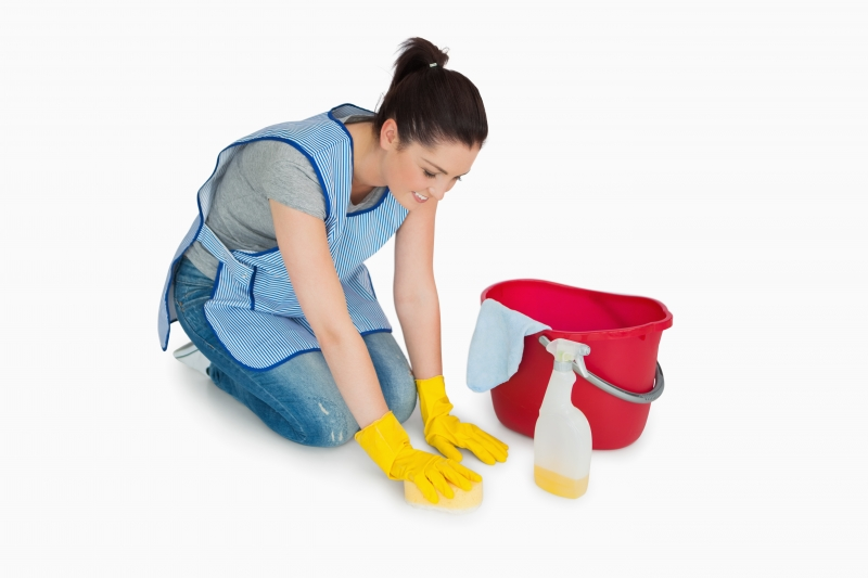 3936267-cleaning-woman-washing-the-floor
